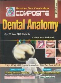 Composite Dental Anatomy