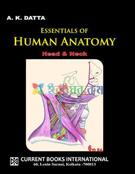 Essentials of Human Anatomy (Head & Neck)